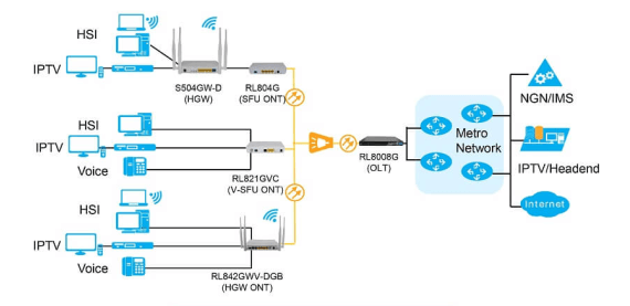 What is Optical Access Network (OAN) ?